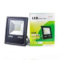 Прожектор светодиодный ЕВРОСВЕТ 30 Вт 6400 К EV-30-01 2100 Лм SMD